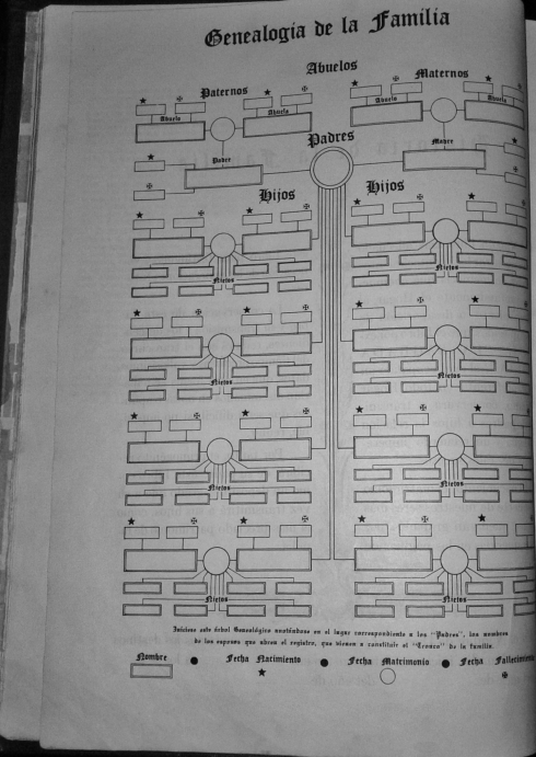Your name here - family tree in family Bible